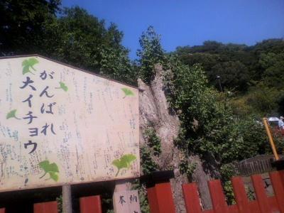 2010_0911_1438.JPG